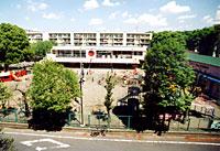染地幼稚園写真1